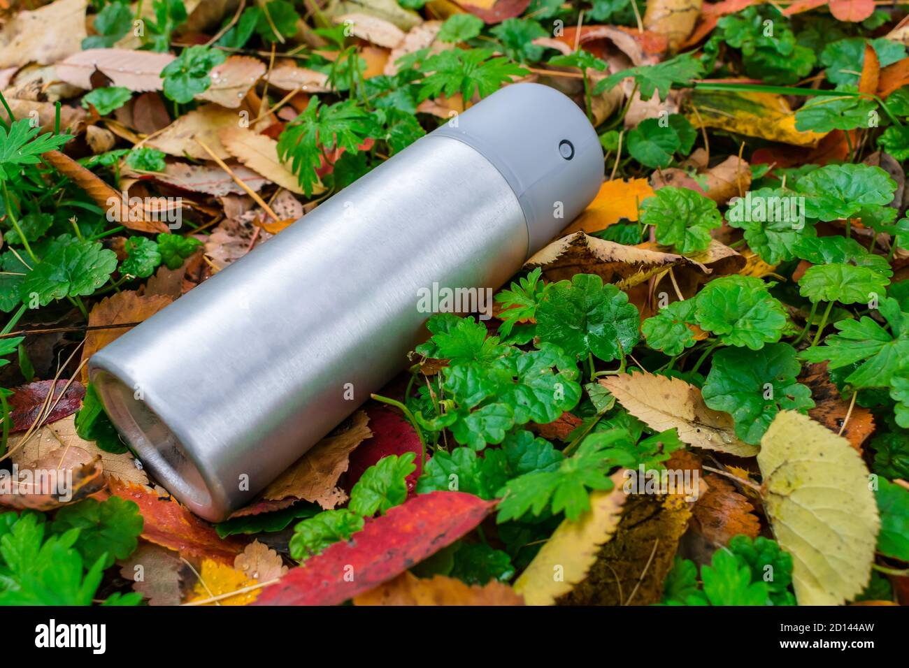 A deodorant thrown out on the lawn in an aluminum can lies on the grass with autumn leaves Stock Photo