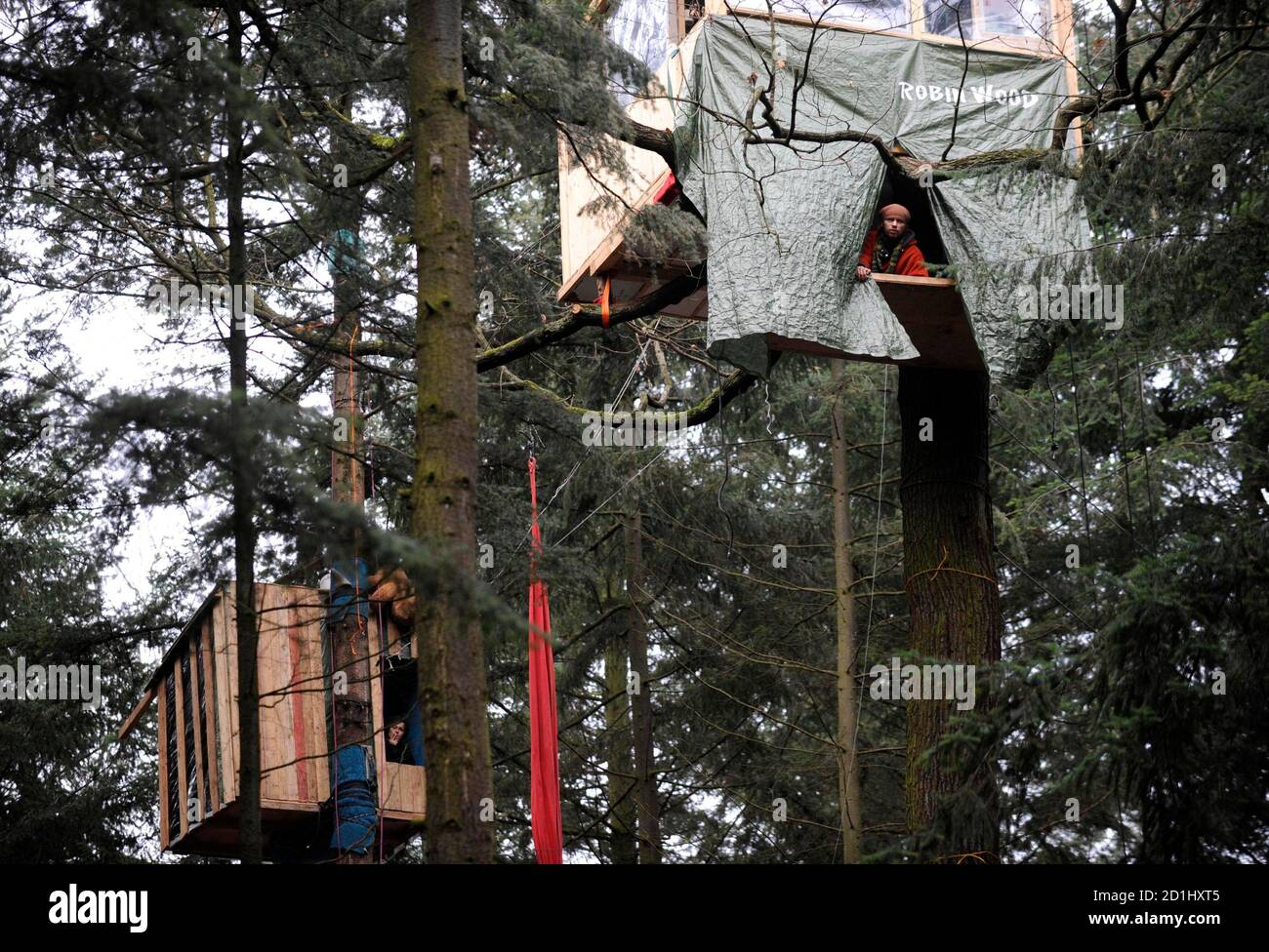 Activists of environmental organization Robin Wood observe police activities from their tree houses, built in protest against the clearing of a wooded area for a new runway for the airport, in Frankfurt January 20, 2009. Some of the demonstrators have been living in the wooded area slated for clearing as a form of protest for the past 6 months. REUTERS/Kai Pfaffenbach (GERMANY) Stock Photo