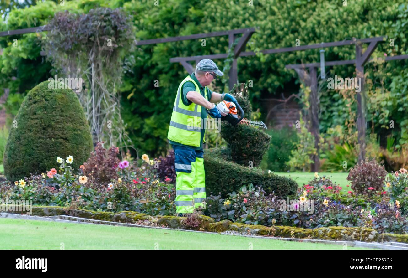 Glasgow Scotland Uk 6th October 2020 Uk Weather A Gardener Carefully Trims The Spiral Topiary Trees In The Walled Garden Of Bellahouston Park Credit Skully Alamy Live News Stock Photo Alamy