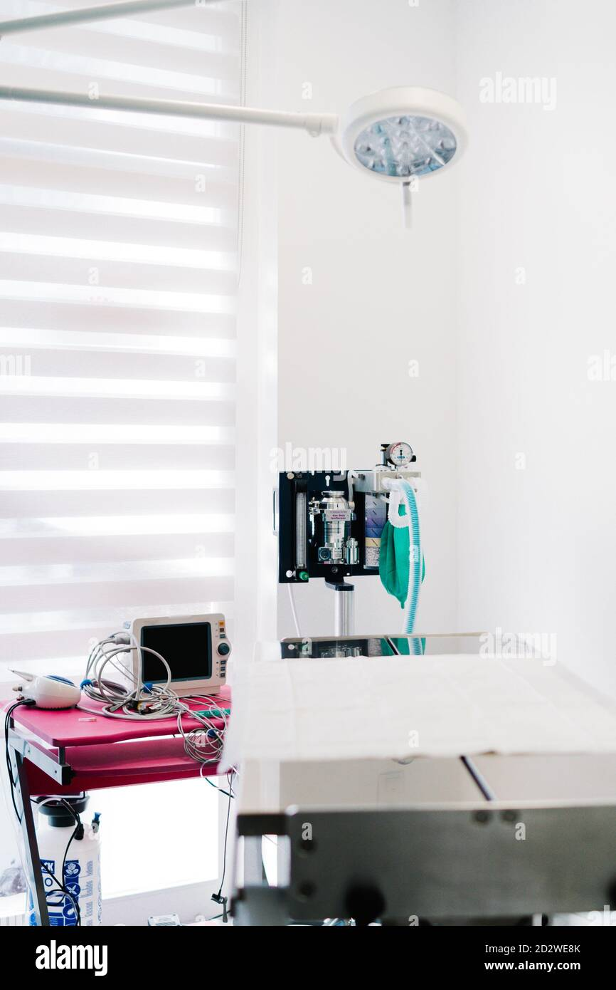 Interior of contemporary operating theater with metal table and gas anesthesia machine in veterinary hospital Stock Photo