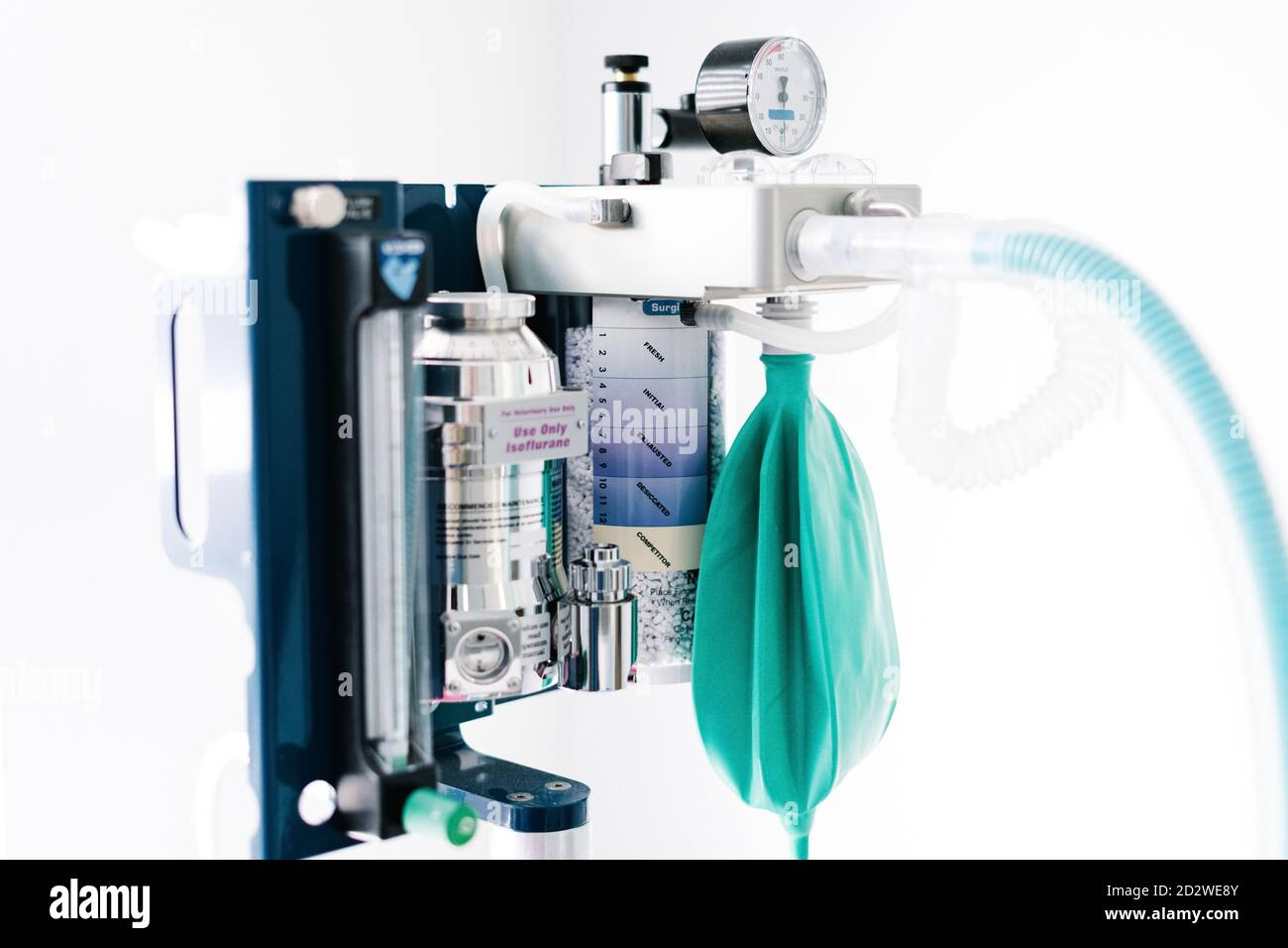 Modern machine for gas anesthesia placed in operating room in bright veterinary clinic Stock Photo