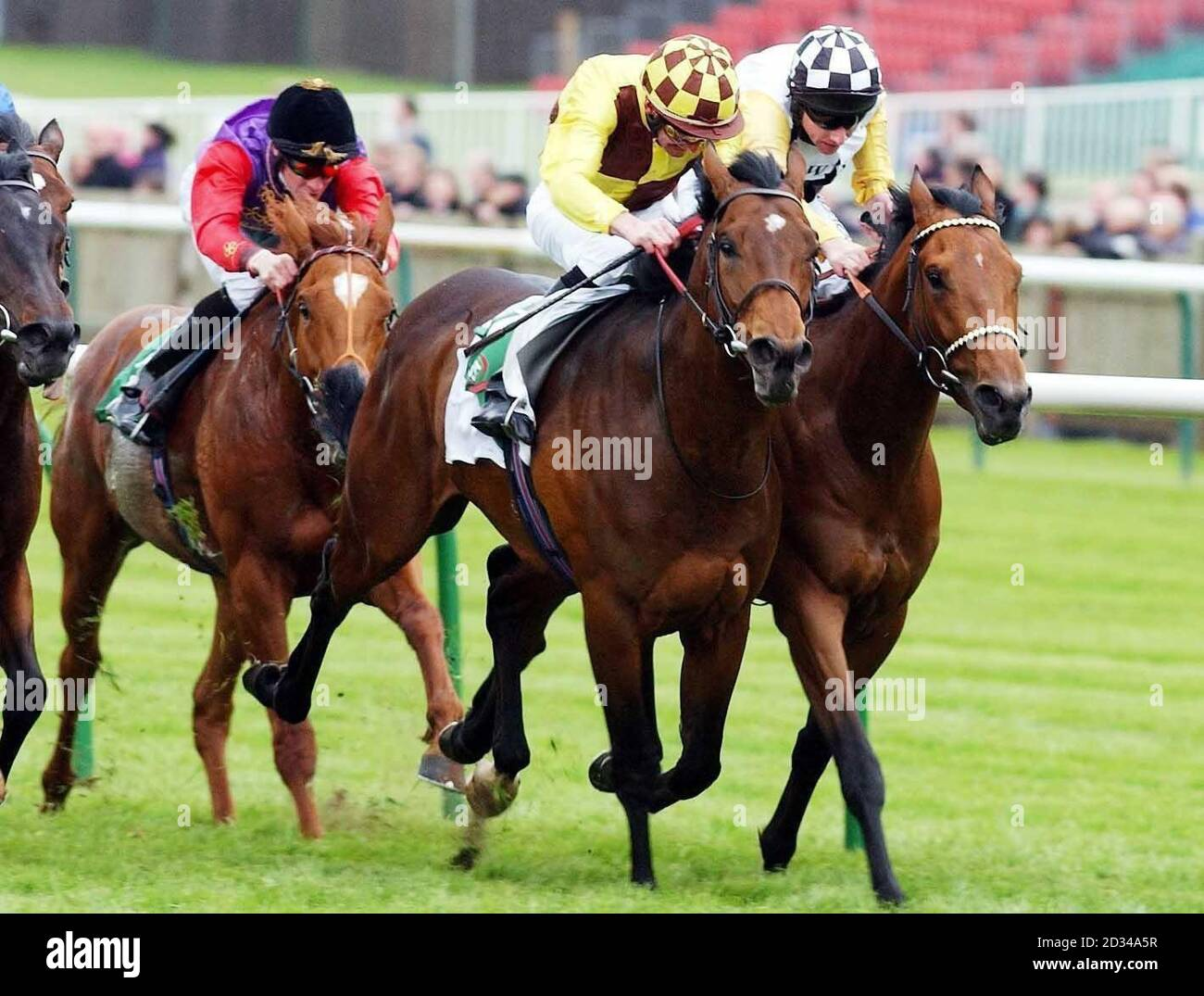 craven stakes betting on sports