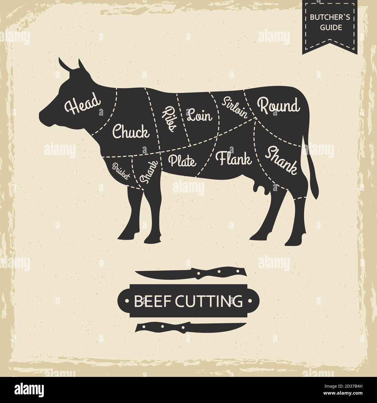 Butchers library vintage page - beef cutting vector poster design Stock Vector