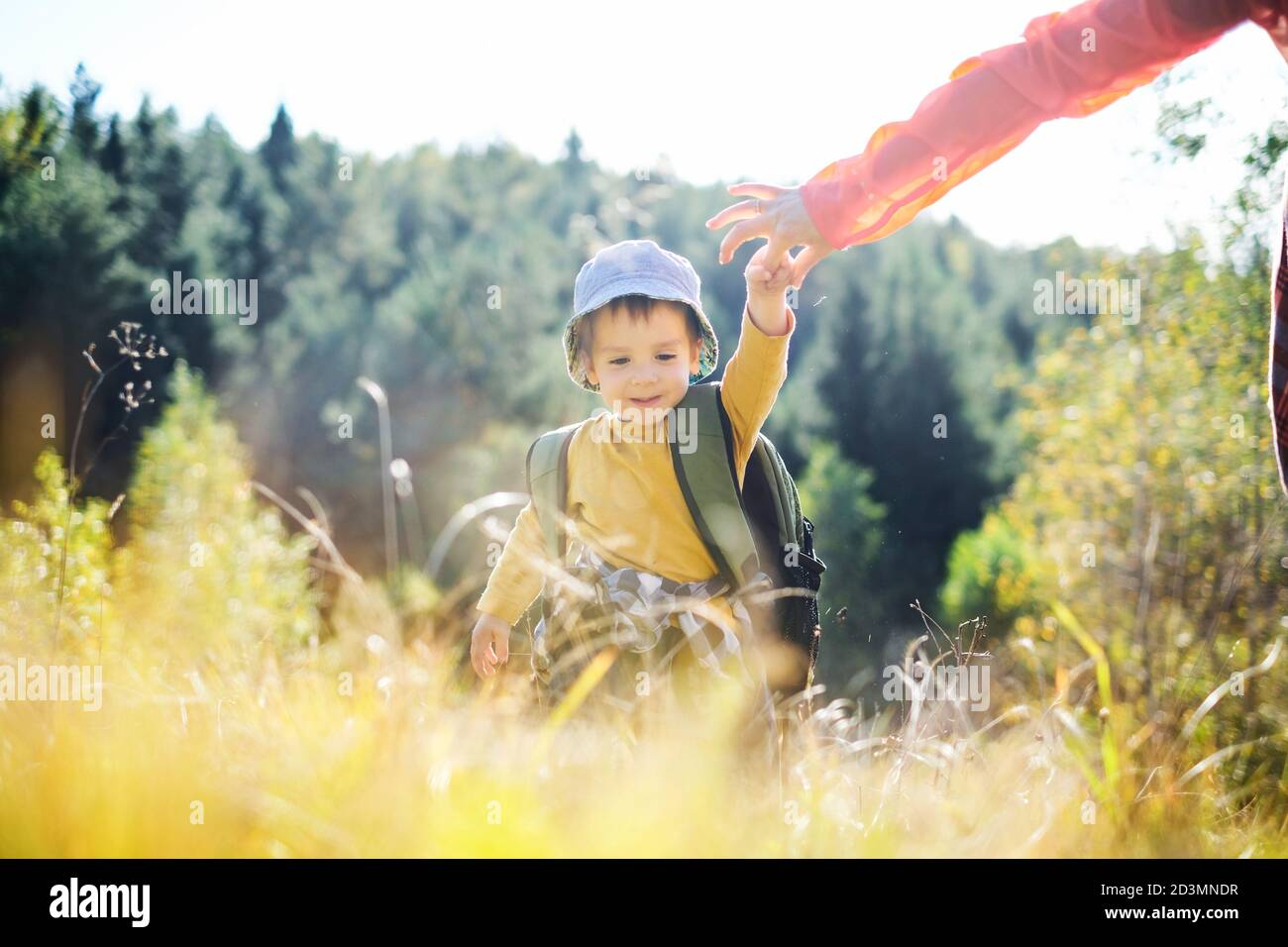 Small kid in yellow sweater walking with mother in autumn forest. Childhood with nature loving concept Stock Photo