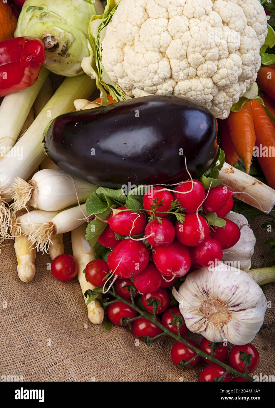 Assortment of various fresh organic vegetables from the garden Stock Photo