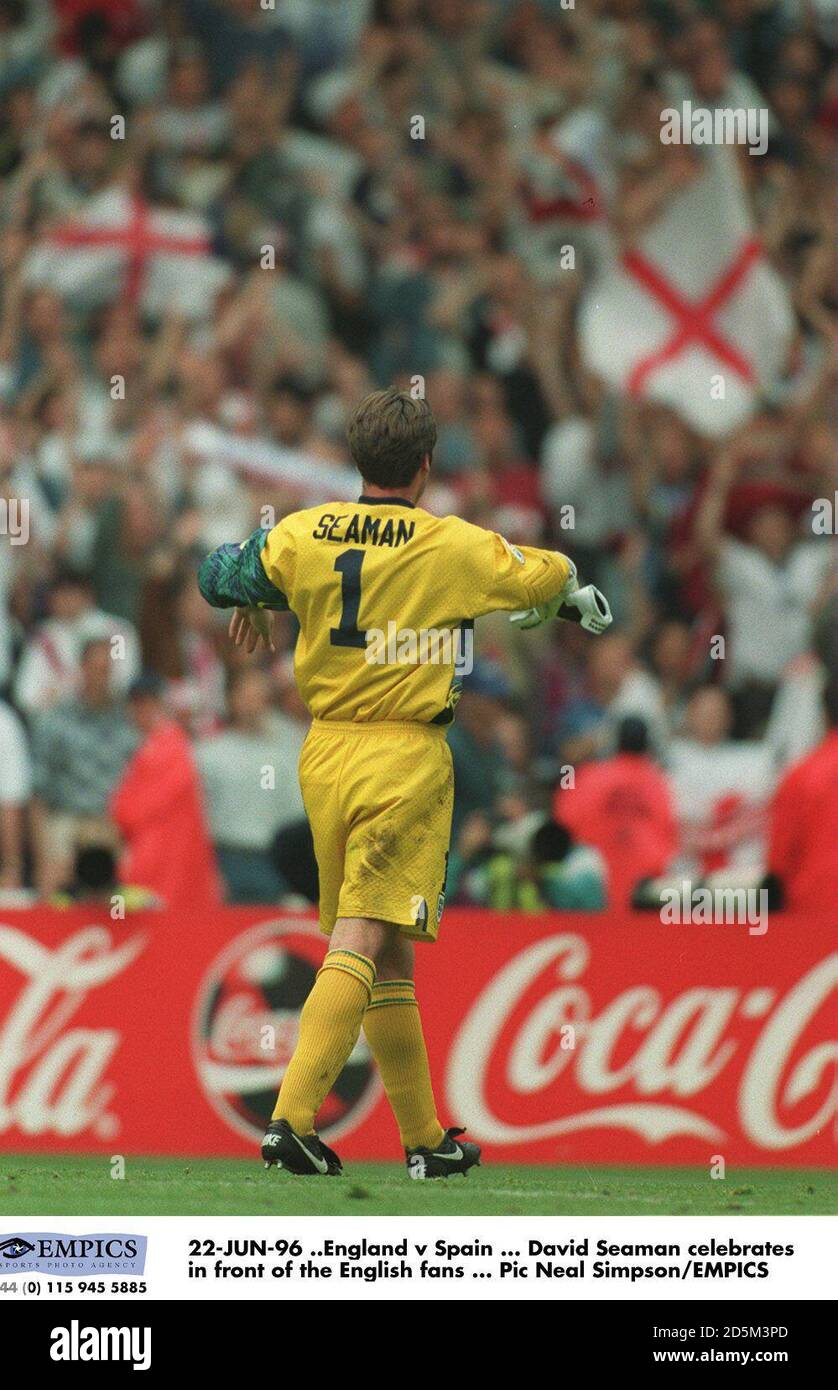 22-JUN-96 ..England v Spain ... David Seaman celebrates in front of the English fans Stock Photo