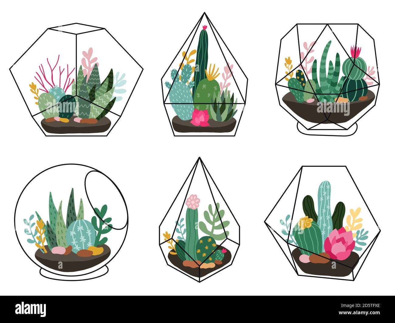 Terrarium Plants Geometric Succulent Cactus Terrariums Hand Drawn Terrariums With Exotic Plants Scandinavian Style Vector Illustration Set Stock Vector Image Art Alamy