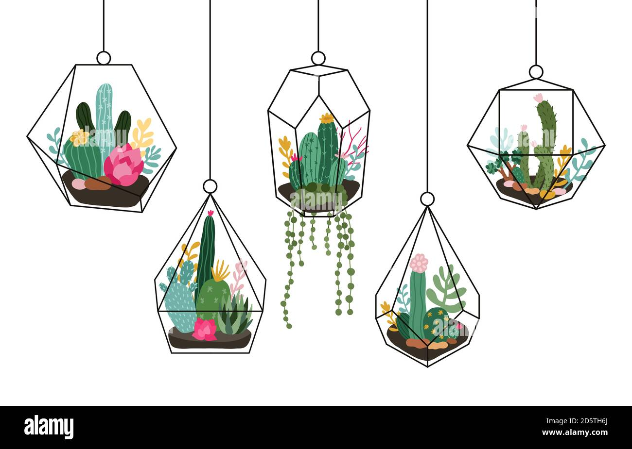 Doodle Hanging Terrarium Succulents And Cactuses Glass Florariums Tropical Plants Interior Geometric Terrarium Isolated Vector Illustration Set Stock Vector Image Art Alamy