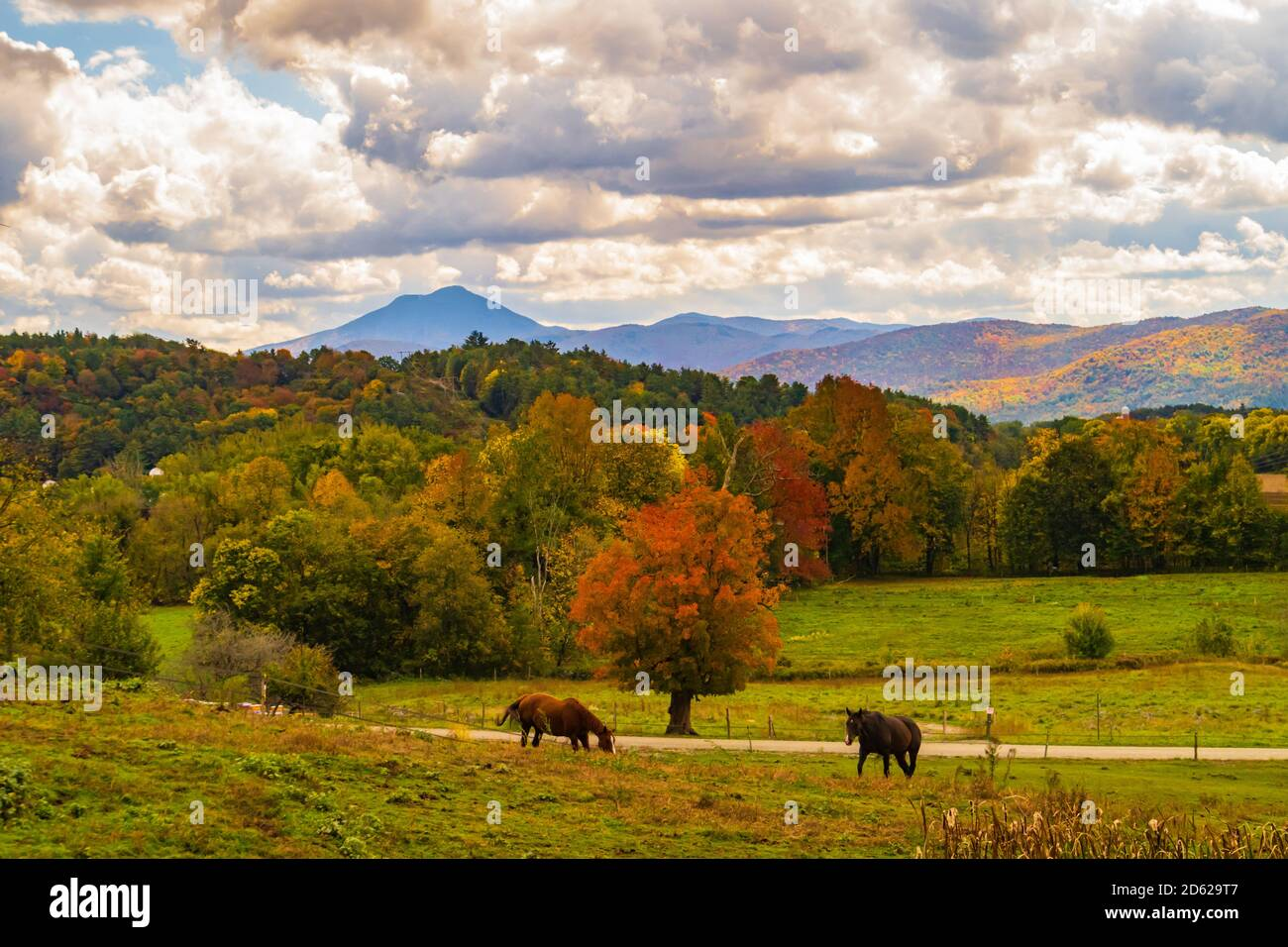 view of Camels Hump Mountain in fall foliage season, in Vermont Stock Photo