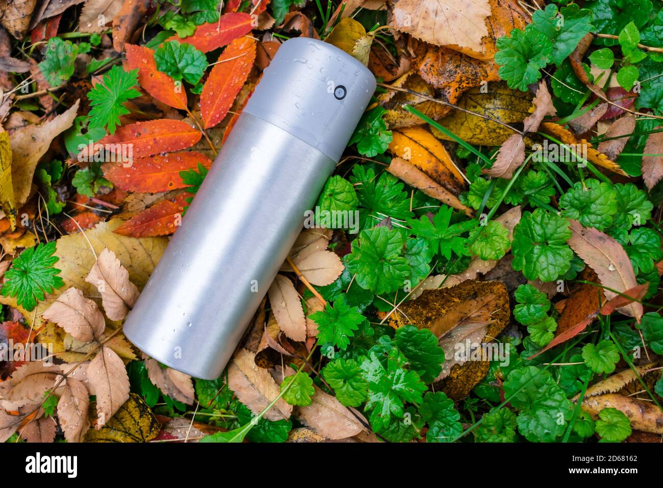 A can of deodorant or air freshener thrown out on the lawn in the autumn grass Stock Photo