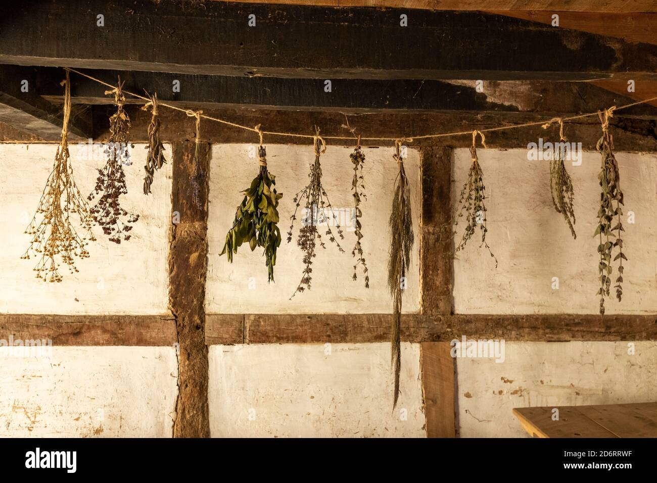 Bunches of herbs, plants, flowers hanging up to dry inside a timber framed house Stock Photo