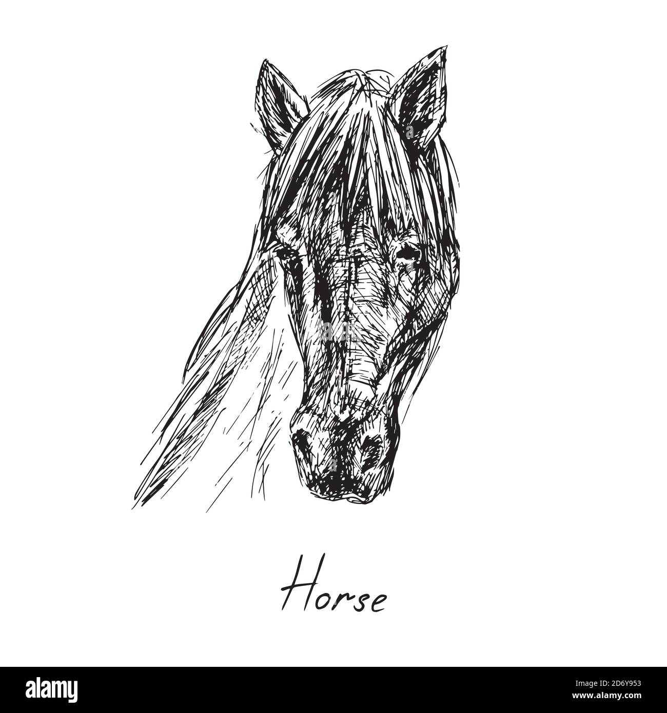 Horse Portrait Hand Drawn Ink Doodle Sketch Black And White Illustration Stock Photo Alamy