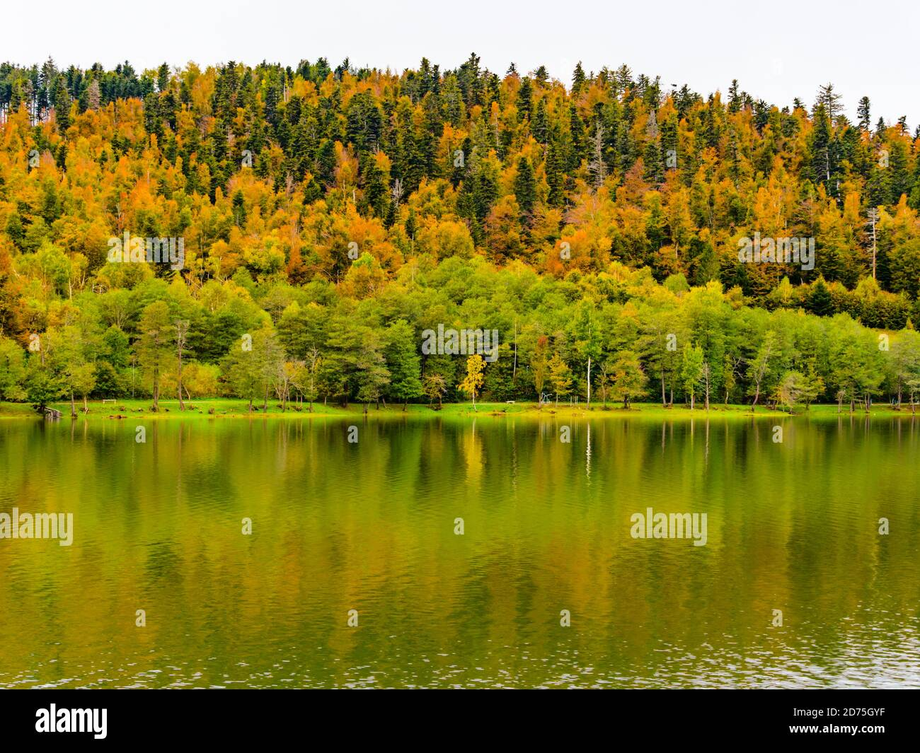 Croatia Bajer lake smooth coastline in Autumn Fuzine in Croatia Europe Stock Photo