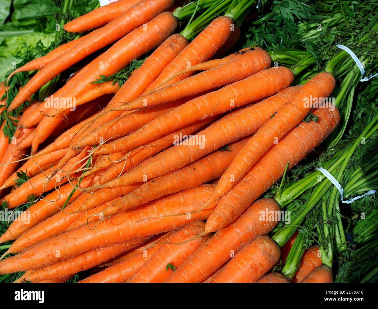 Food. Orange carrots for in an outdoor market. Stock Photo