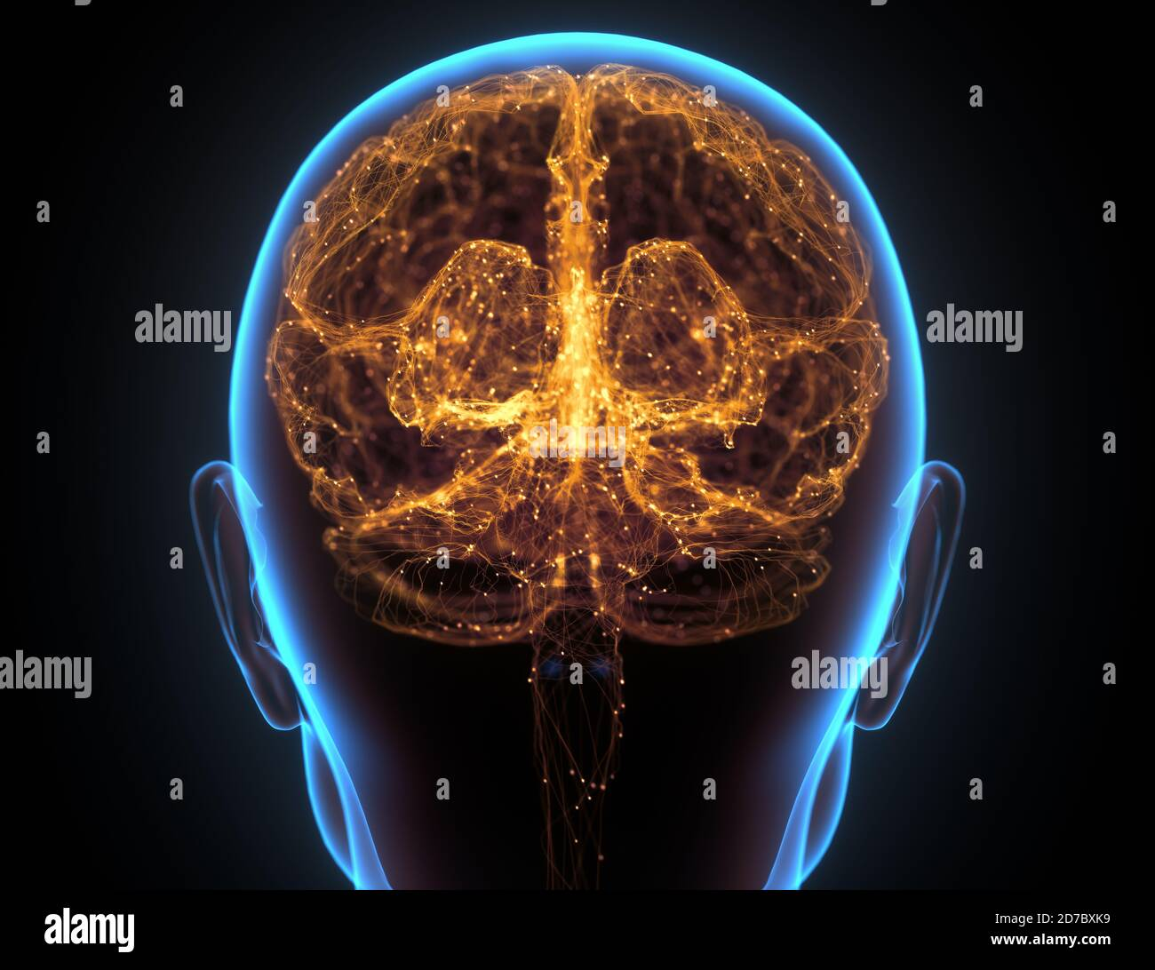 X-ray of the head and human brain in concept of neural connections and electrical pulses. Stock Photo