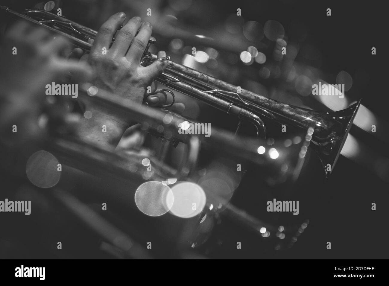 Orchestra in live Stock Photo