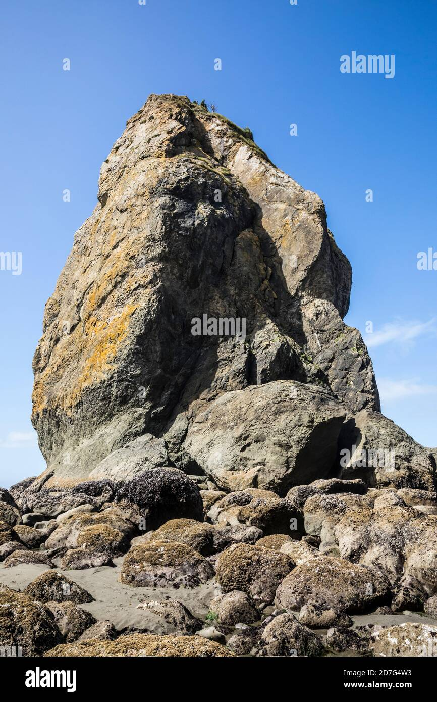 A sea stack rock pinnacle off of 2nd Beach, Olympic Coast National Marine Sanctuary / National Park, Washington, USA. Stock Photo
