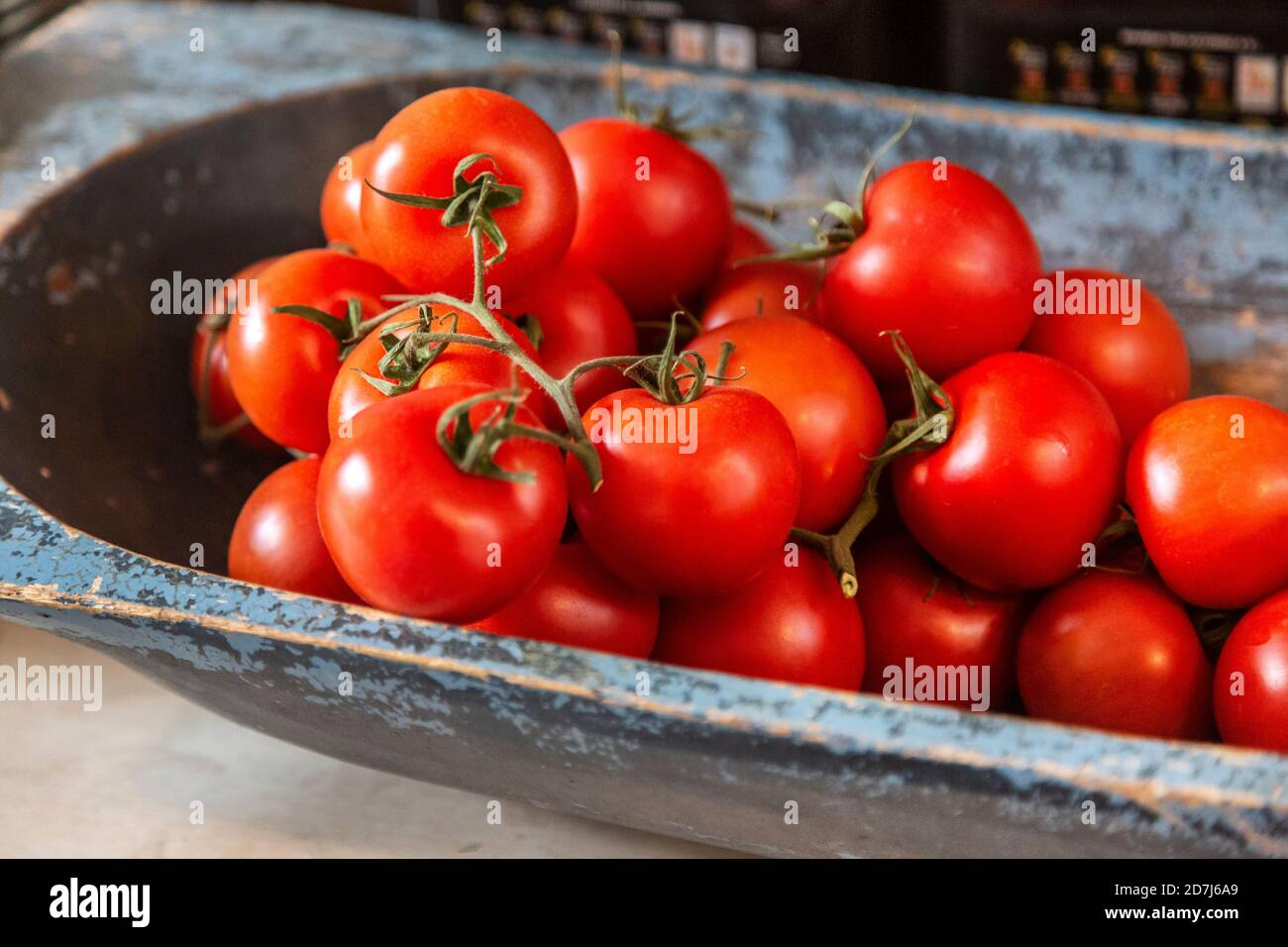 Freshly picked tomatoes in a painted wooden bowl Stock Photo