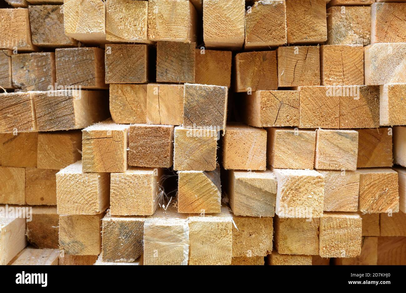 Lumber in sawmill, ends of timber blocks for texture background. Sawed and processed wood in warehouse, timber stack in factory yard. Pile of wooden b Stock Photo
