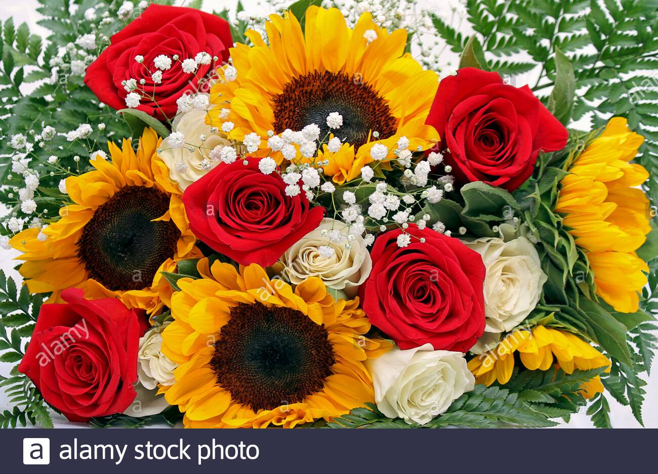 Flower Arrangement With Fresh Roses Sunflowers Gypsophila Or Paniculata And Fern Leaves Photographed Close Up Occupying The Entire Image Stock Photo Alamy