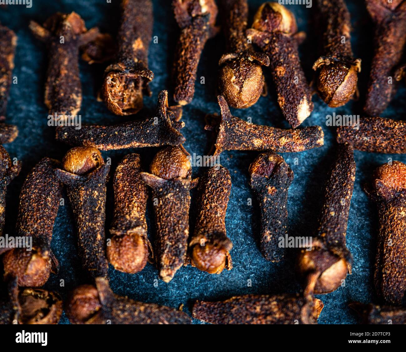 Close-up of cloves on a dark blue background shot overhead Stock Photo