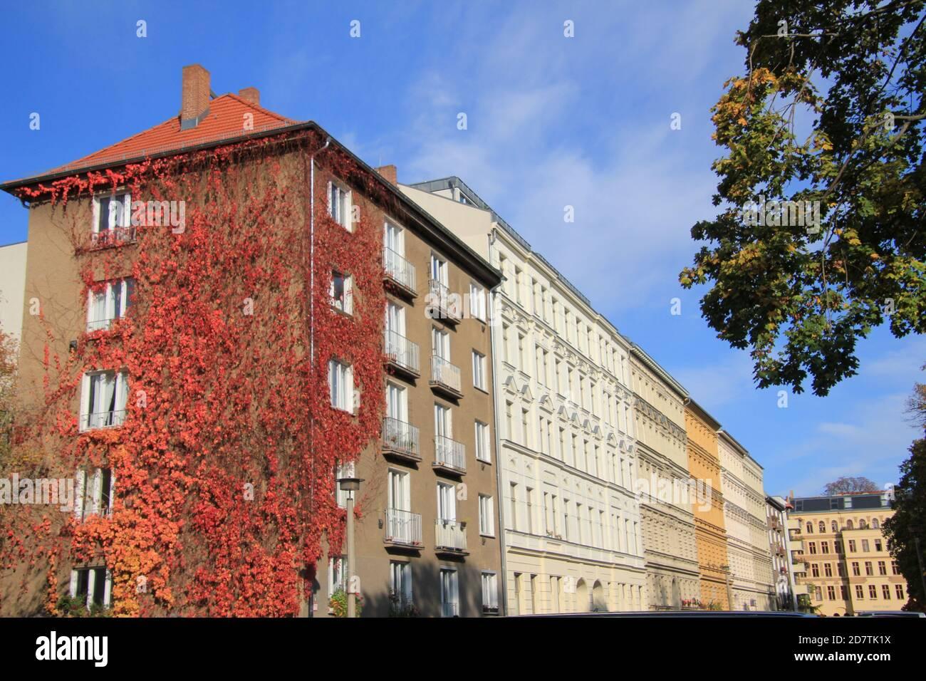 Wohnhäuser werden von der Herbstsonne in der Diedenhofer Straße, Berlin Prenzlauer-Berg, angestrahlt. Park am Wasserturm. Stock Photo