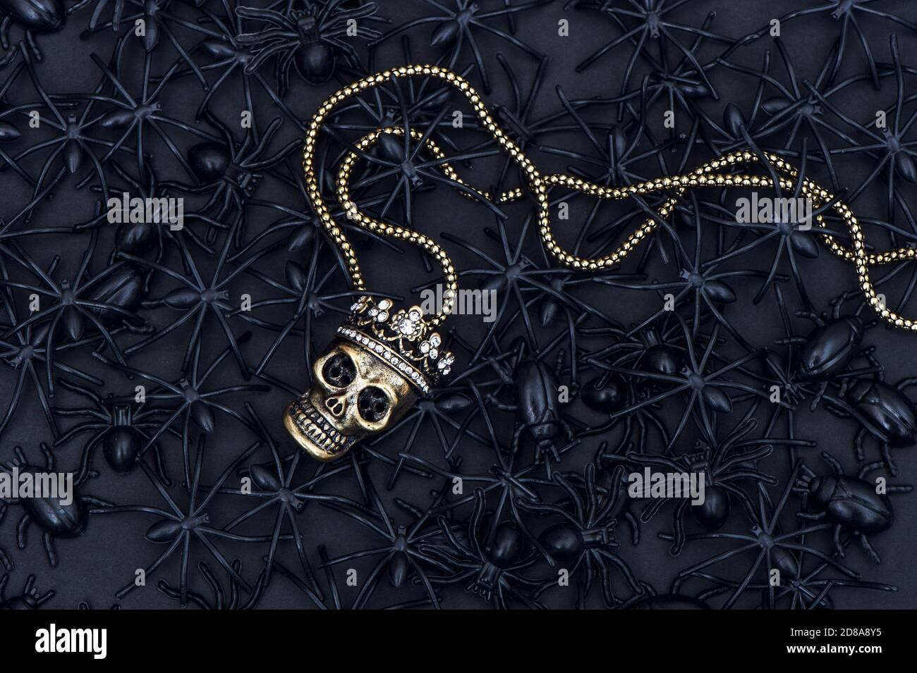 Spider and beetle with skull decoration. Black Halloween background Stock Photo