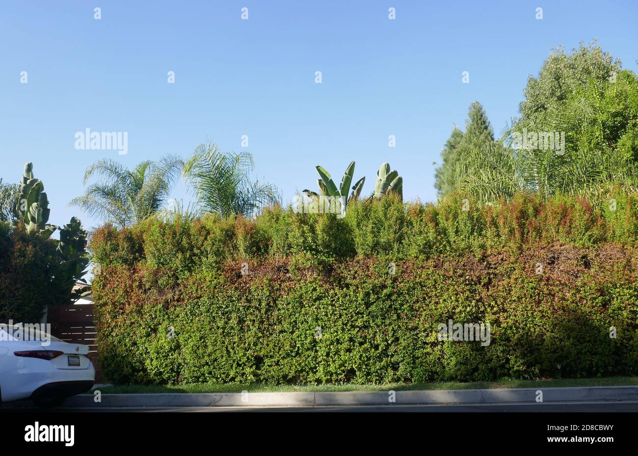 Tarzana, California, USA 28th October 2020 A general view of atmosphere of Lisa Marie Presley's former home at 18531 Wells Drive on October 28, 2020 in Tarzana, California, USA. Photo by Barry King/Alamy Stock Photo Stock Photo