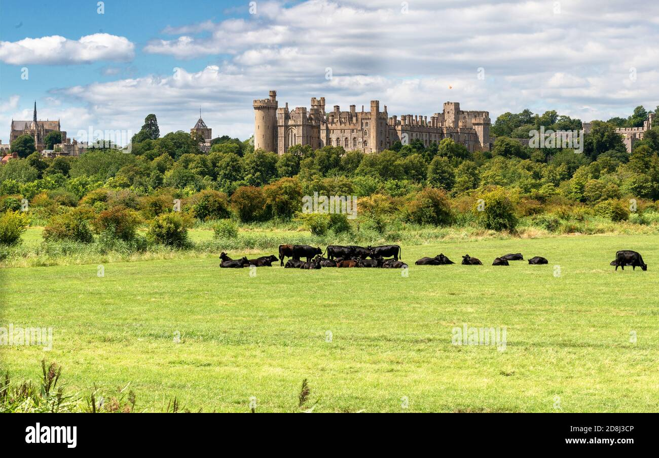 Arundel Castle with the Fitzaland Chapel to the left taken mid-summer. Arundel, West Sussex, England, UK Stock Photo
