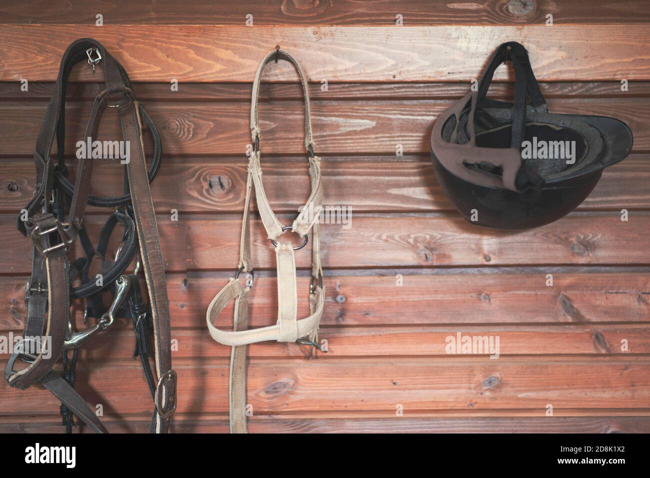 Horse riding concept items, helmet and bridle hangs on a wooden wall Stock Photo