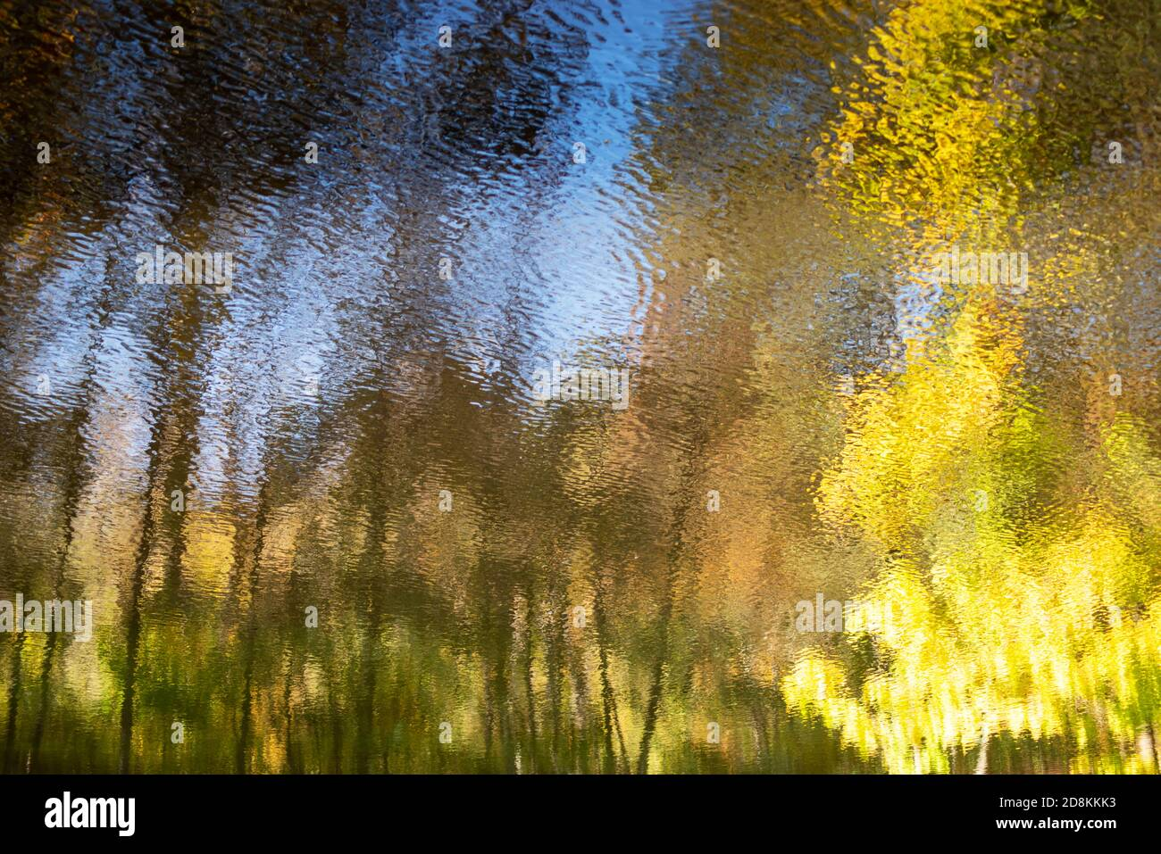 Abstract Autumn woodland reflected in flowing water Stock Photo