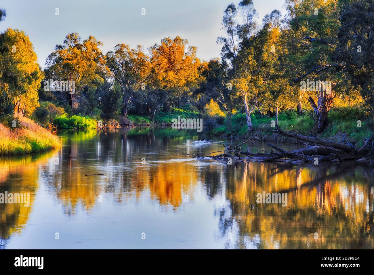 Macquarie river flowing in Dubbo city of Great Western plains in Australia - scenic landscape at sunset. Stock Photo
