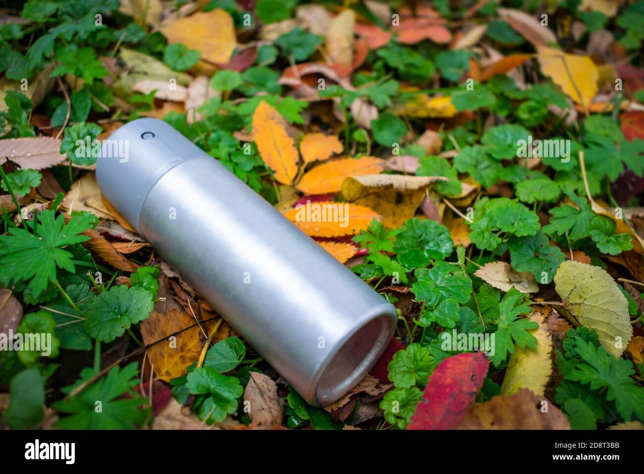 Trash in the form of an antiperspirant spray thrown on the lawn in the autumn foliage Stock Photo