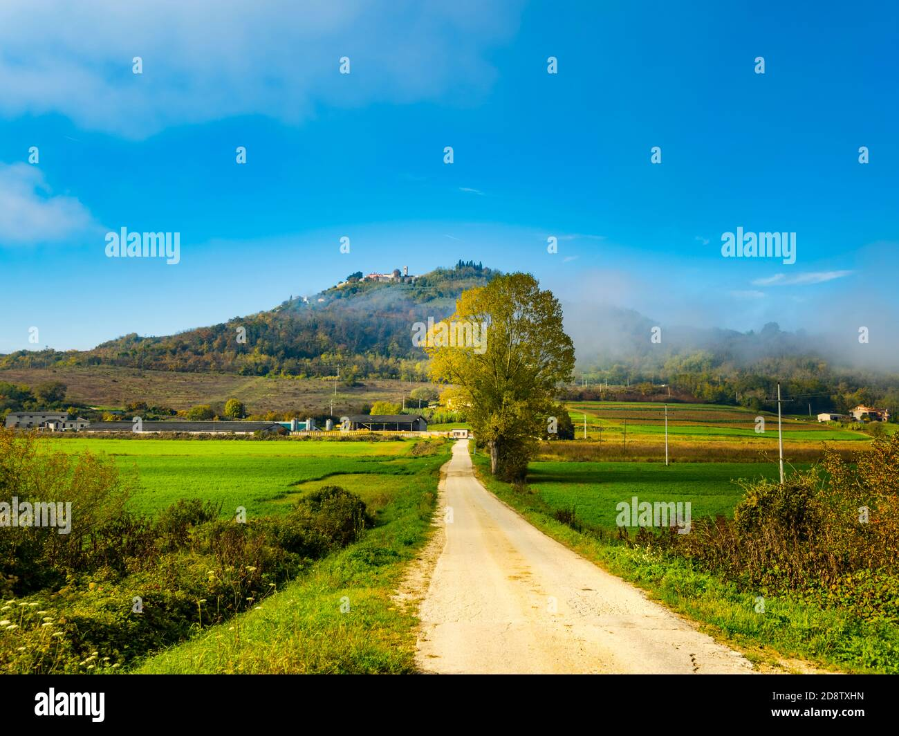 Glorious Motovun in Istria Croatia Europe Stock Photo