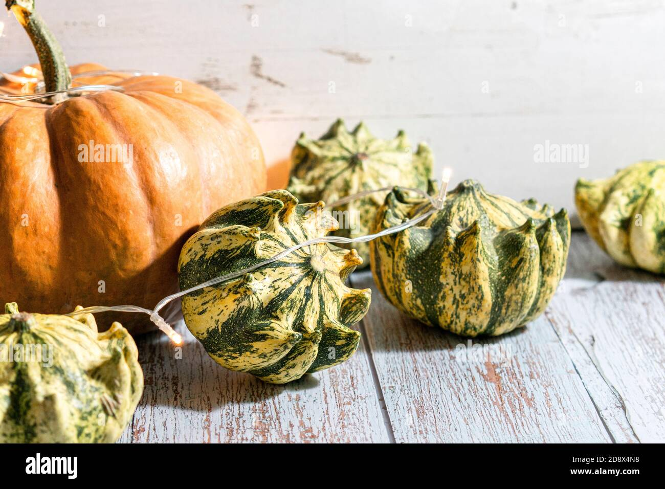 Thanksgiving Background Composition With Various Colorful Pumpkins And Garland On Wooden Background Autumn Holiday Pumpkin Harvest Seasonal Vegetables Natural Healthy Food Stock Photo Alamy