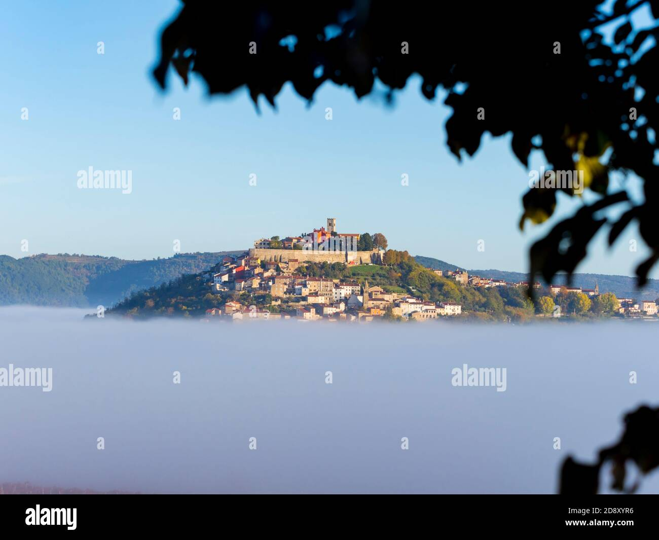 Like floating old town above thick fog stunning Motovun in Istria Croatia Europe tree branch leaves silhouetting blurry in foreground Stock Photo