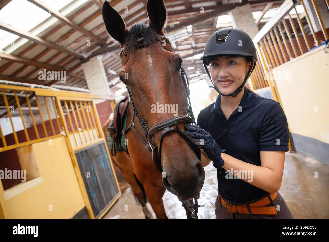 The Stables Of Horses And A Beautiful Young Woman Stock Photo Alamy