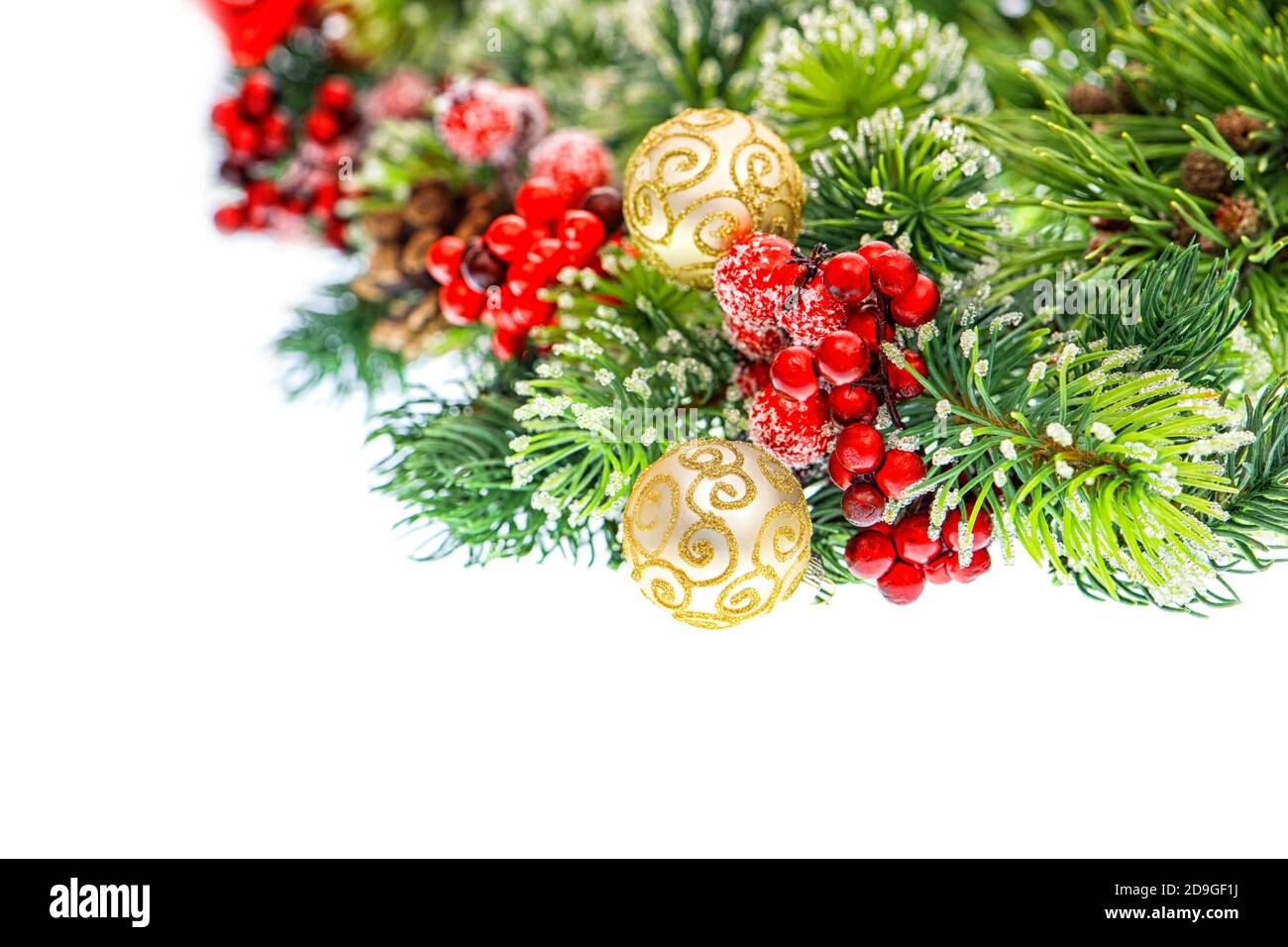 Christmas tree branches with red golden decoration Stock Photo