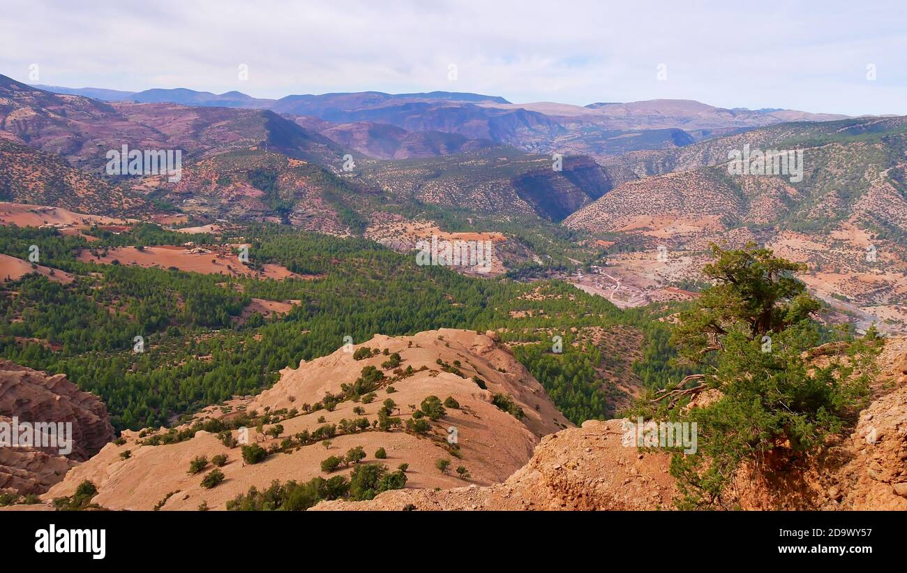 Panorama view of the foothills of Altas Mountains covered with coniferous forests from the peak rock formation cathedrale imsfrane near Tilouguite. Stock Photo