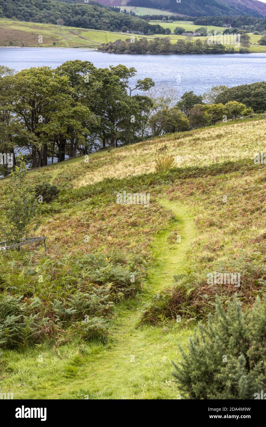 A grassy footpath leading down to Buttermere in the English Lake District, Cumbria UK Stock Photo