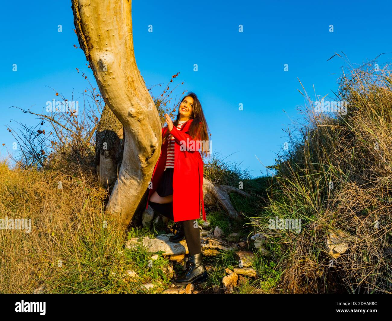 Young woman happiness natural environment inclined on tree warm sunset light Stock Photo