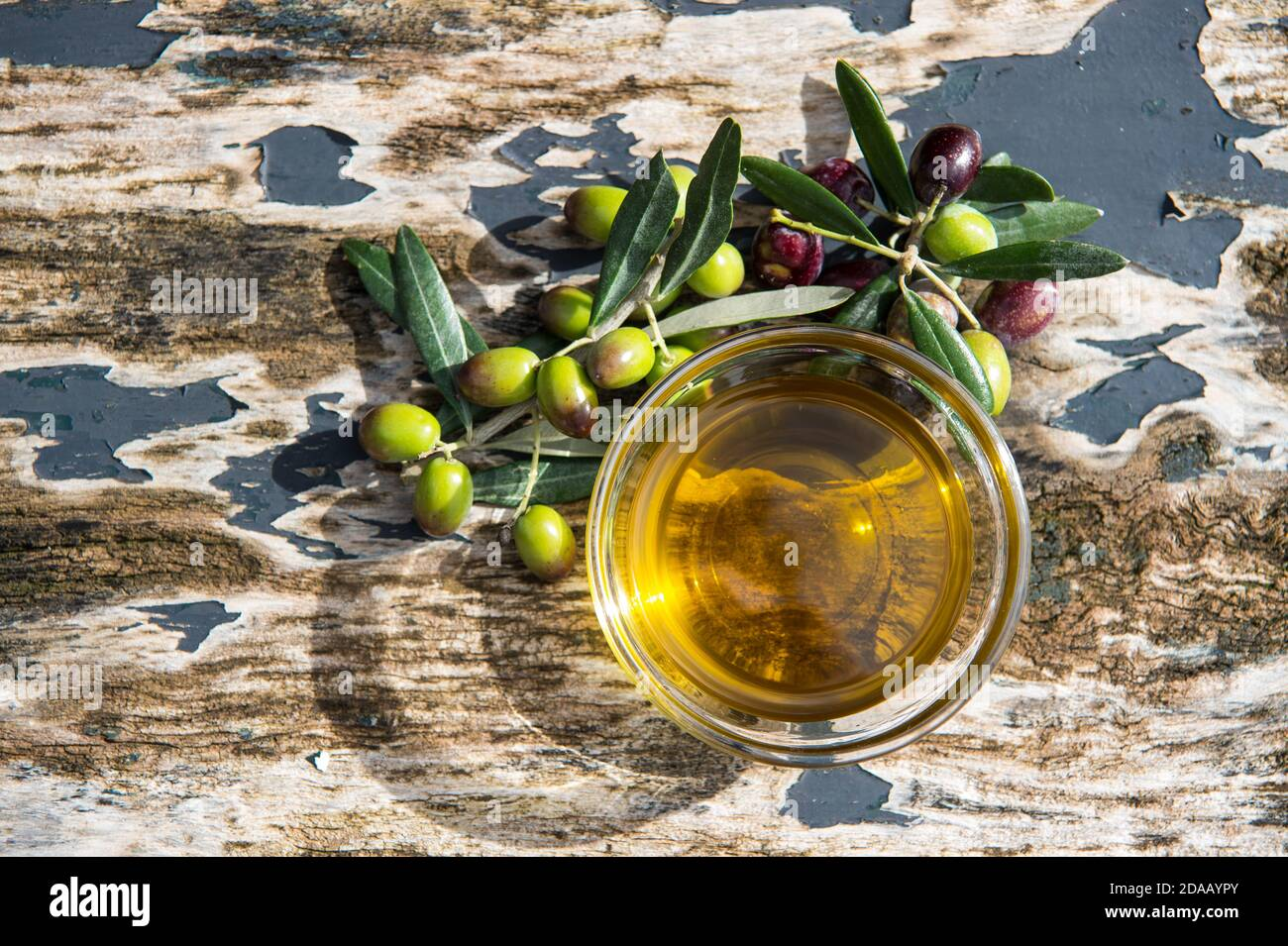 olive extra virgin oil in glass transparent bowls on the wooden background in sunlights. Healthy mediterranean food. Stock Photo