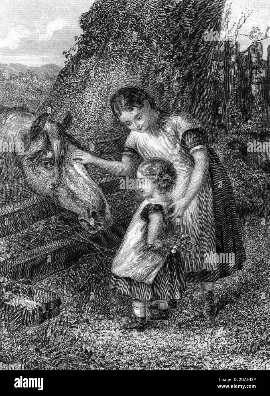 Want of Confidence Children approach a horse with fear and caution from Godey's Lady's Book and Magazine, Marc, 1864, Volume LXIX, (Volume 69), Philadelphia, Louis A. Godey, Sarah Josepha Hale, Stock Photo