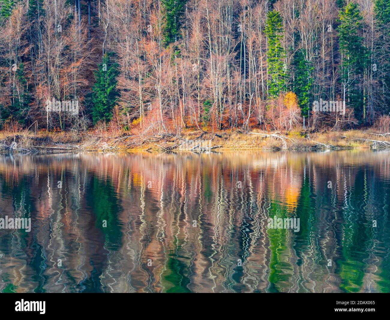 Gorgeous late Autumnal lake reflection with hint of first morning dribble waves Lokve lake Lokvarsko jezero in Croatia Europe Stock Photo