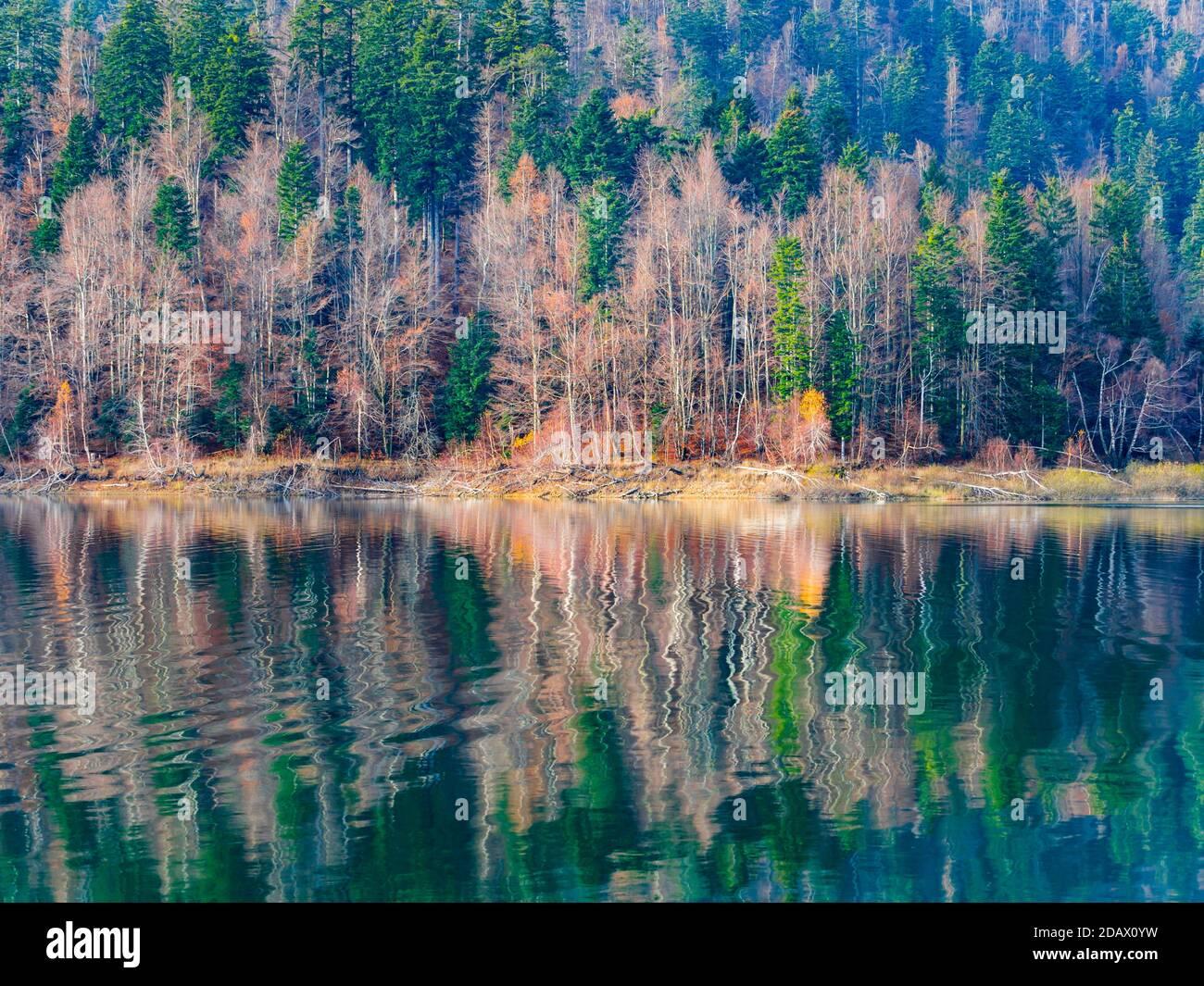 Stunning serene late Autumnal lake reflection with hint of first morning dribble waves Lokve lake Lokvarsko jezero in Croatia Europe Stock Photo