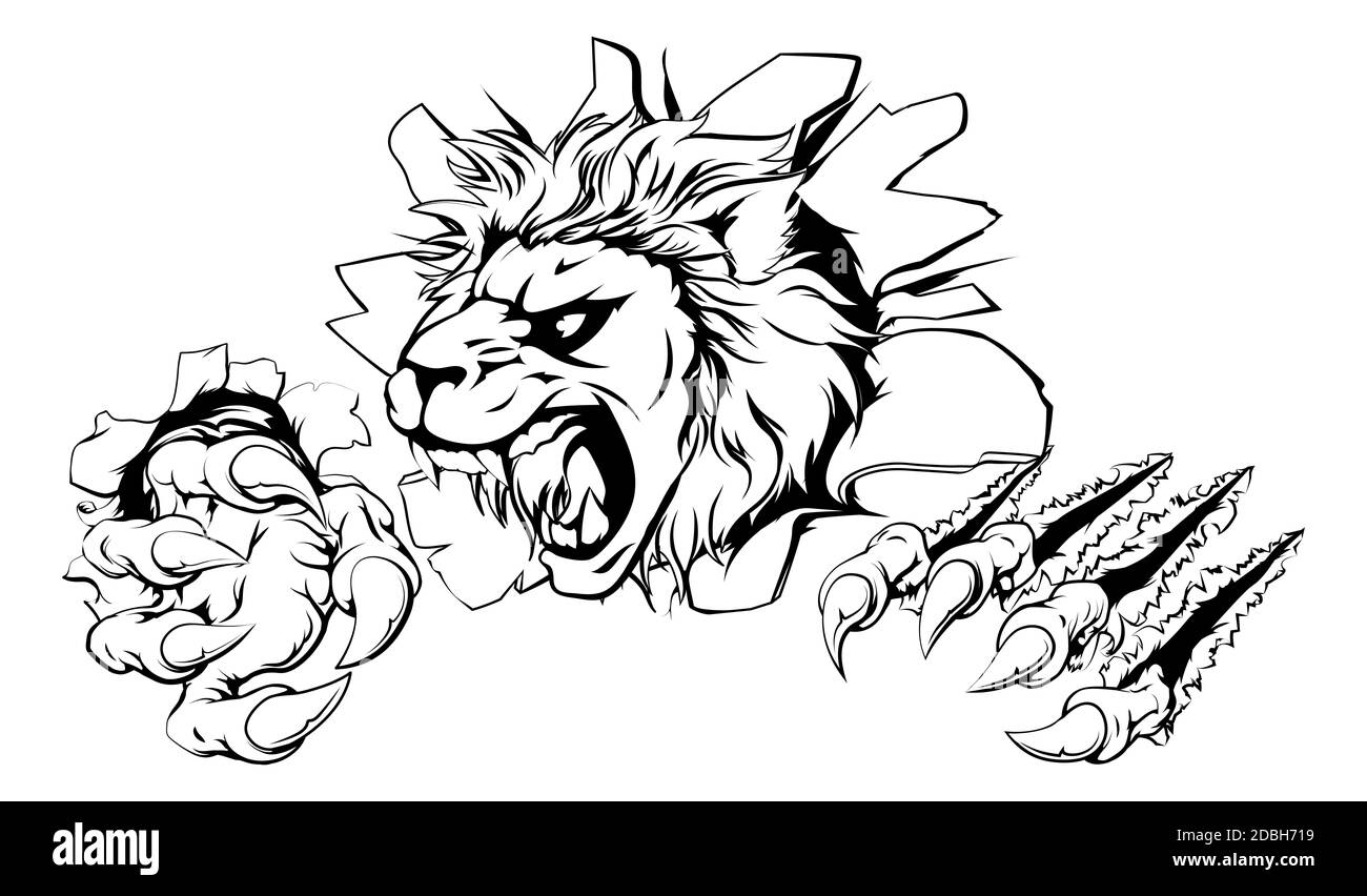 Angry Lion Drawing Black And White Stock Photos Images Alamy Choose from over a million free vectors, clipart graphics, vector art images, design templates, and illustrations created by artists worldwide! https www alamy com a lion sports mascot or character breaking out of the background or wall image385768021 html
