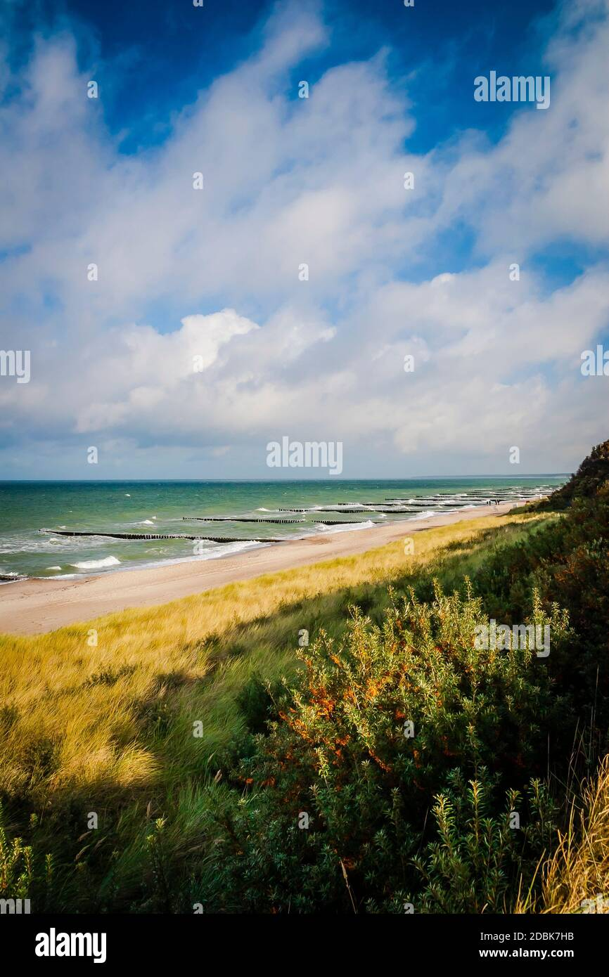 Beach at the west beach at the Darß, Mecklenburg-Western Pomerania, Germany Stock Photo