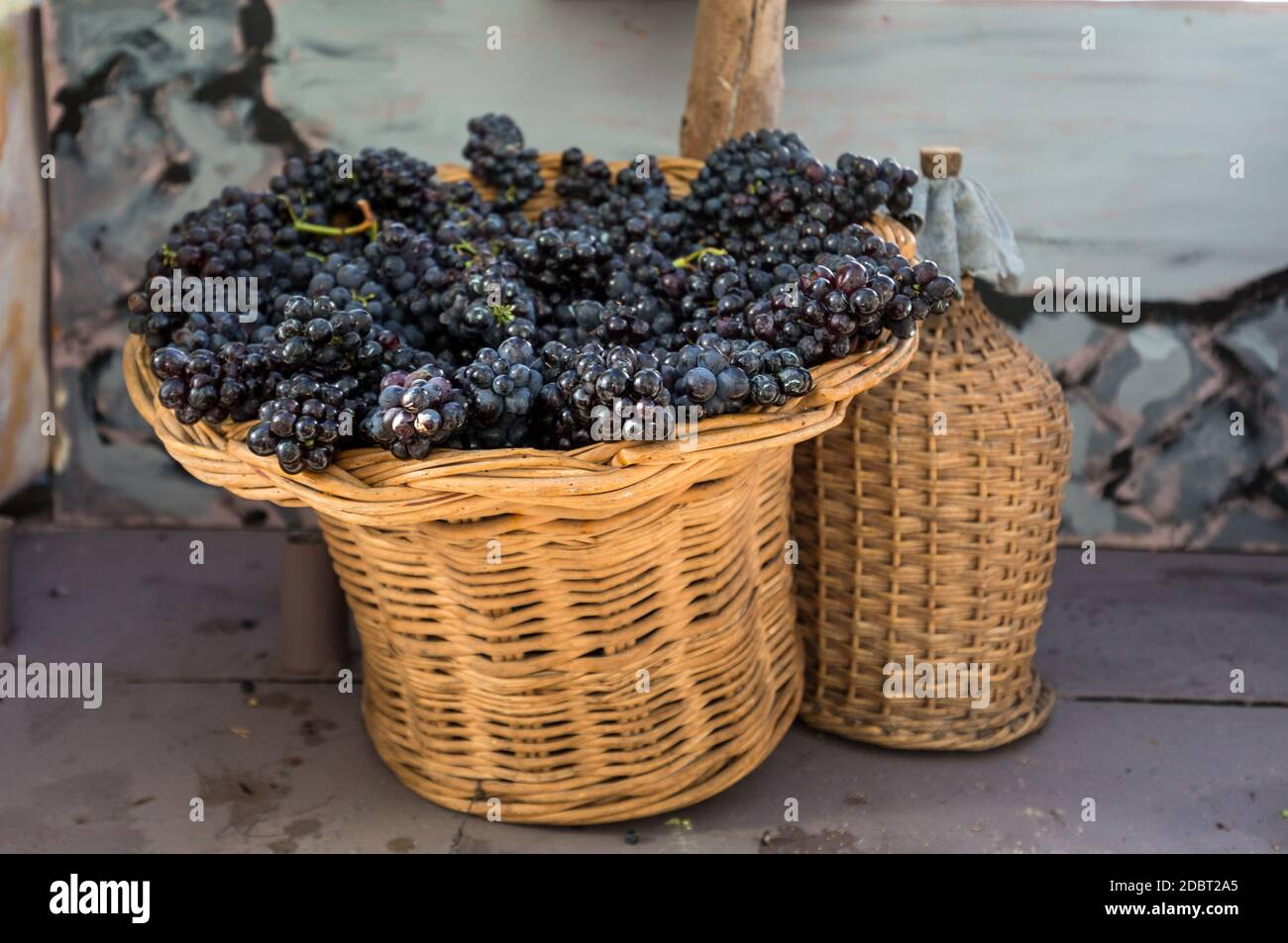 bunches of red grapes in a wicker basket and carboy Stock Photo