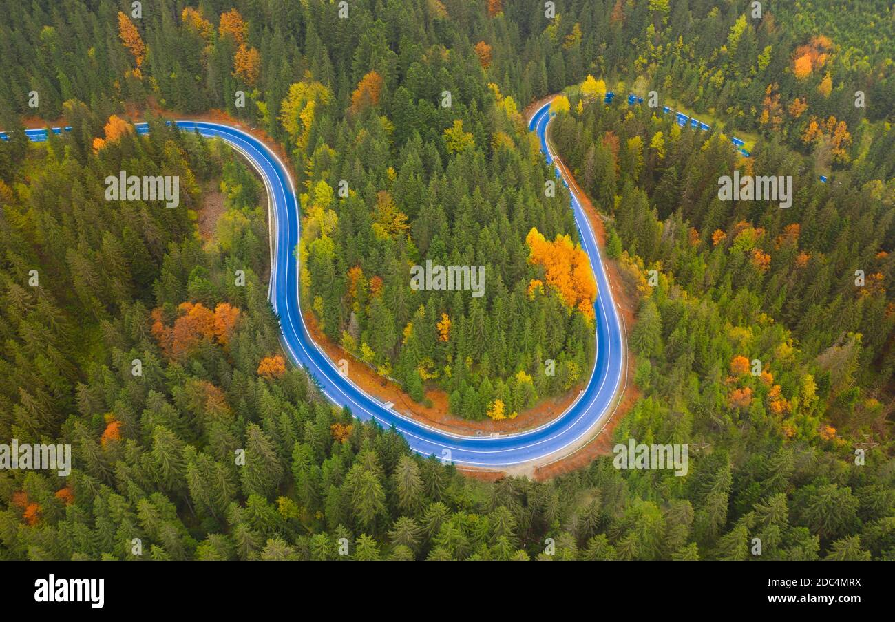 Asphalted road in the autumn mountain forest. Stock Photo