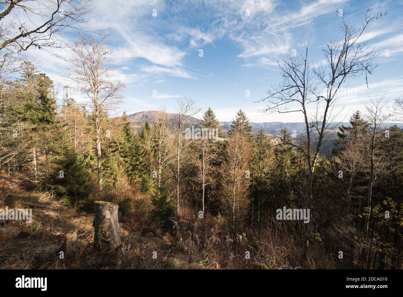 black forest germany landscape, near Belchen Stock Photo